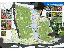 公園ガイドマップ