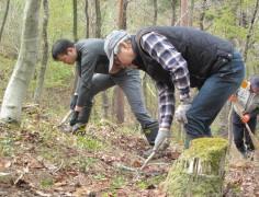 森づくり活動2019
