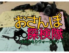 ☆おさんぽ探検☆