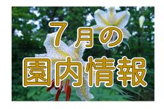 5/11~一部利用規制のある開館
