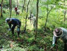 森づくり活動2021