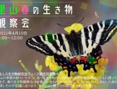 里山生き物観察会  ~おもしろ生き物研究室 ジュニア研究員募集中!~