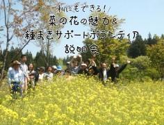 菜の花の魅力&種まきサポートボランティアの説明会