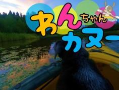【終了】わんちゃんカヌー